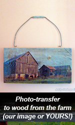 Photo Transfer Fundraiser