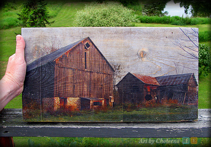barn-transfer-on-old-wood-woodgrain-IMG_2628