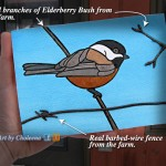 "I made this Chickadee series with real branch and barbed wire from the farm. See my ""Chickadee artwork"" link below."