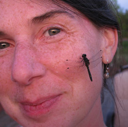 farm-dragonfly-on-cheek-sunset-260px-IMG_0213