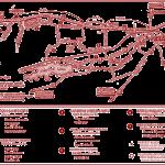 Perth Studio tour map-and-particpants-2014