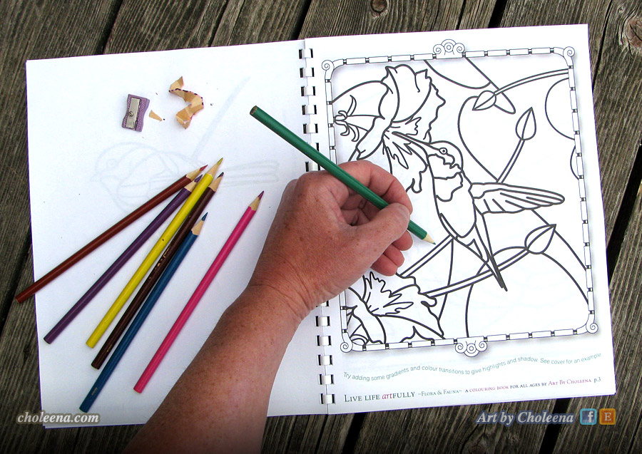 colouring-book-hand-humingbird-IMG_2635