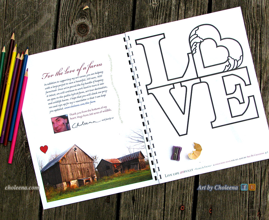 colouring-book-inside-cover-love-of-a-farm-IMG_2652
