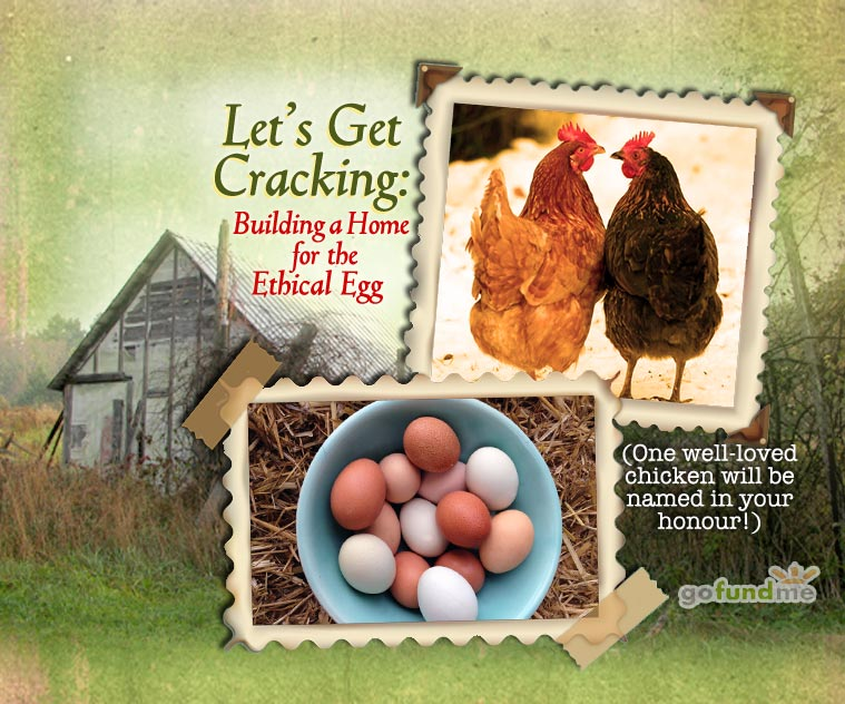 hen-house-get-cracking-campaign3